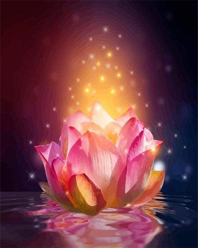 paint by numbers | Light Floating Lotus | advanced flowers | FiguredArt