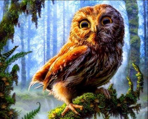 paint by numbers | Owl perched on a branch | advanced animals owls trees | FiguredArt