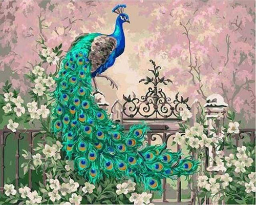 paint by numbers | Peacock and White Flowers | advanced animals peacocks | FiguredArt