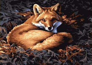 paint by numbers | Pretty Fox | animals easy foxes new arrivals | FiguredArt