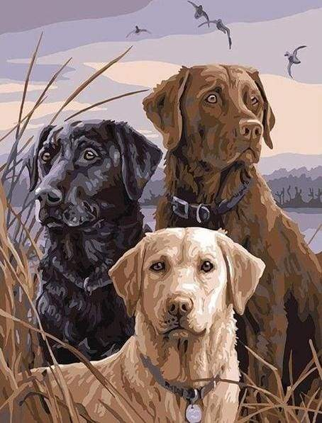 paint by numbers | Three Dogs in the Countryside | animals dogs easy | FiguredArt