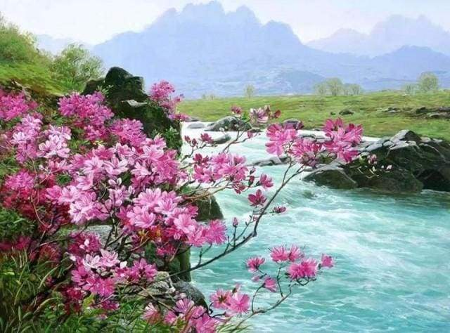 paint by numbers | Wild River | advanced flowers landscapes | FiguredArt