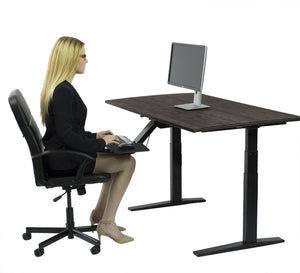 "Rise UP Dual Motor Electric Bamboo Standing Desk 60x30"" Desktop Tall Ergonomic Motorized Height Adjustable Sit"