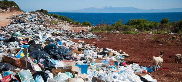 Mountains of plastic trash found near the ocean. Photo by Antoine GIRET on Unsplash