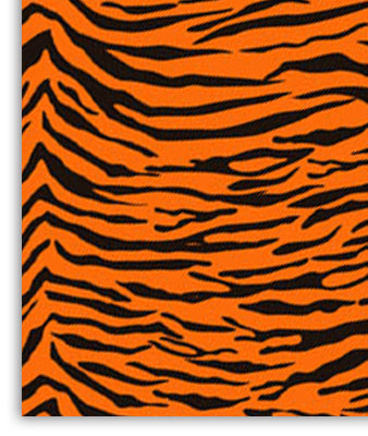"PAPEL DE REGALO SAFARI TIGRE 19""X25"""