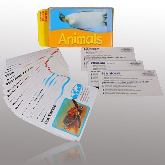 FLASH CARDS ANIMALS