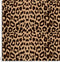 00066-a Brown Leopard.