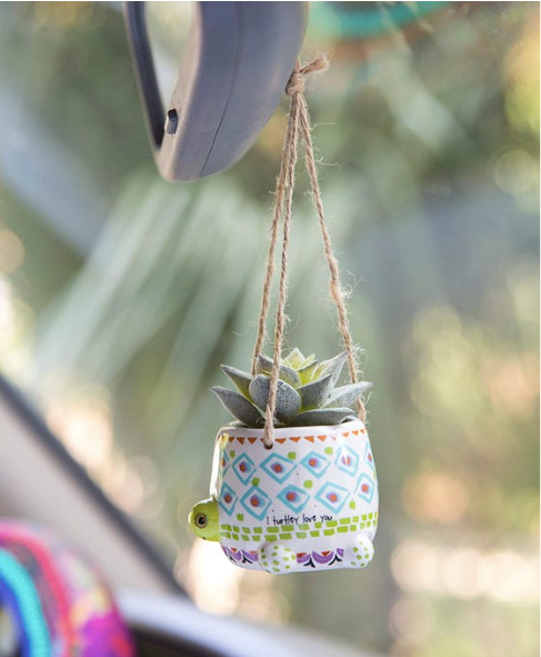 Natural Life Turtle Mini Hanging Faux Succulent