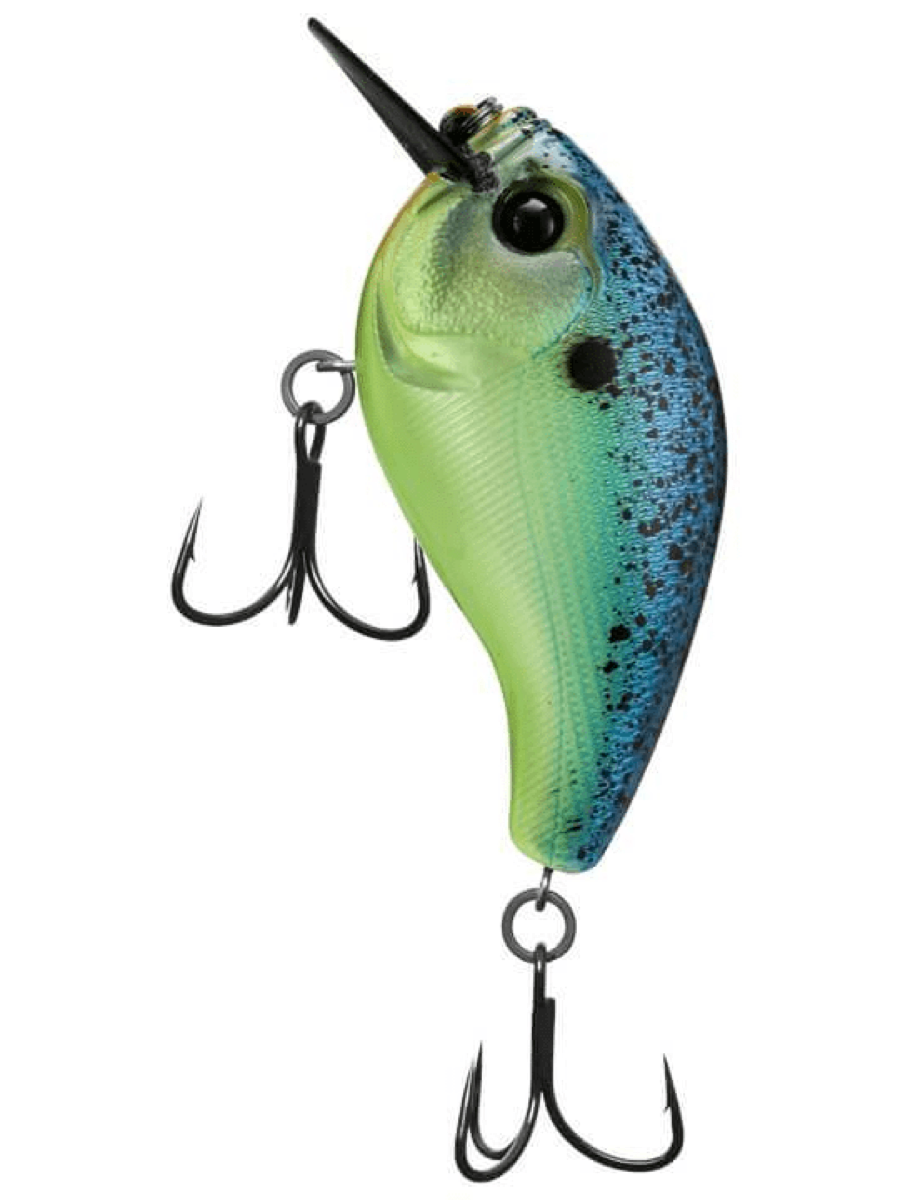 [13] Skamp Square Bill Crankbait