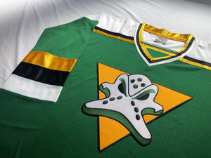 Custom hockey jersey with a Ducks embroidered twill logo