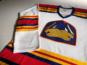 Custom hockey jerseys with the Ducks and Vipers twill logo