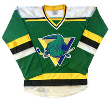 Load image into Gallery viewer, Custom Hockey Jerseys with a Gators Twill Logo $59