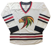 Load image into Gallery viewer, Custom Hockey Jerseys with a Blackhawk Twill Team Logo $59