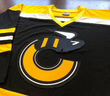 Load image into Gallery viewer, Custom Hockey Jerseys with a Stingers Embroidered Twill Logo $59