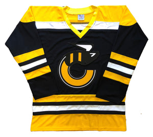 Custom Hockey Jerseys with a Stingers Embroidered Twill Logo $59