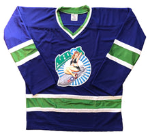 Load image into Gallery viewer, Custom Hockey Jerseys with an Aeros Embroidered Twill Logo $59