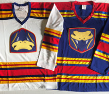 Load image into Gallery viewer, Custom hockey jerseys with the Ducks and Vipers twill logo