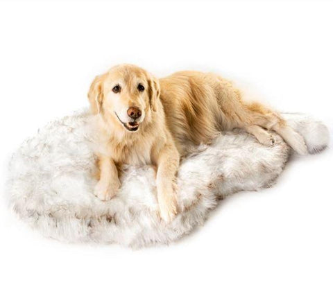 Orthopedic Dog Bed - Memory Foam Dog Bed - Best Orthopedic Dog Bed