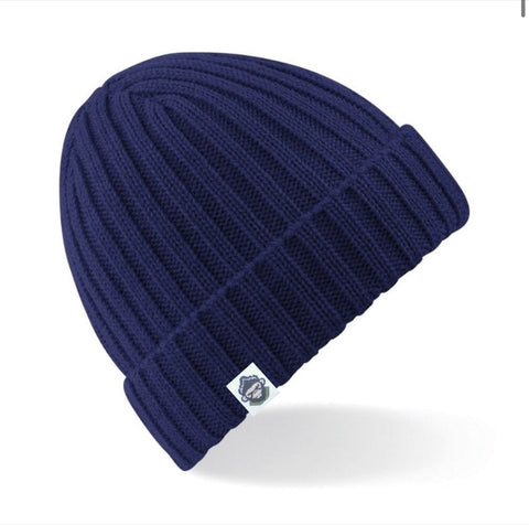 1613 Beanie Hat (Blue) - Parka Monkey