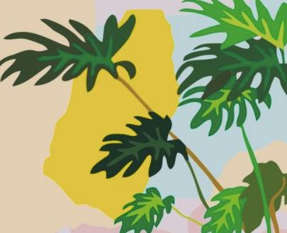 Tropical Minimalism - Exclusive Collection