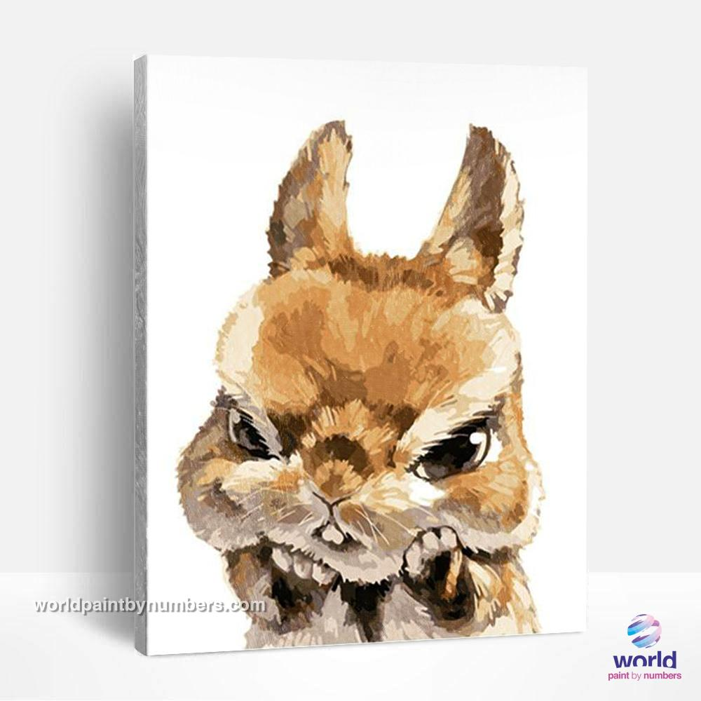 Angry Bunny - World Paint by Numbers™ Kits DIY