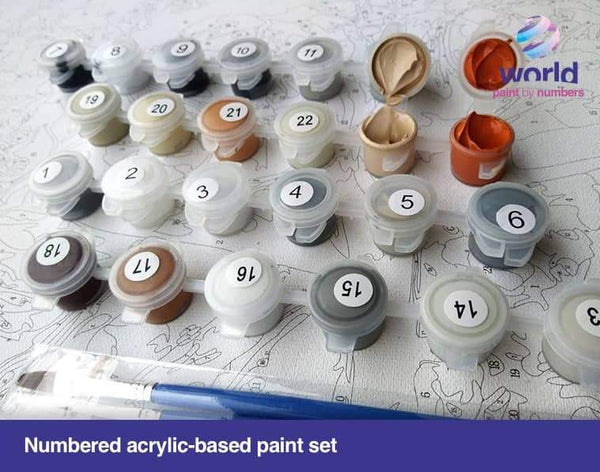 Color Cat - World Paint by Numbers™ Kits DIY