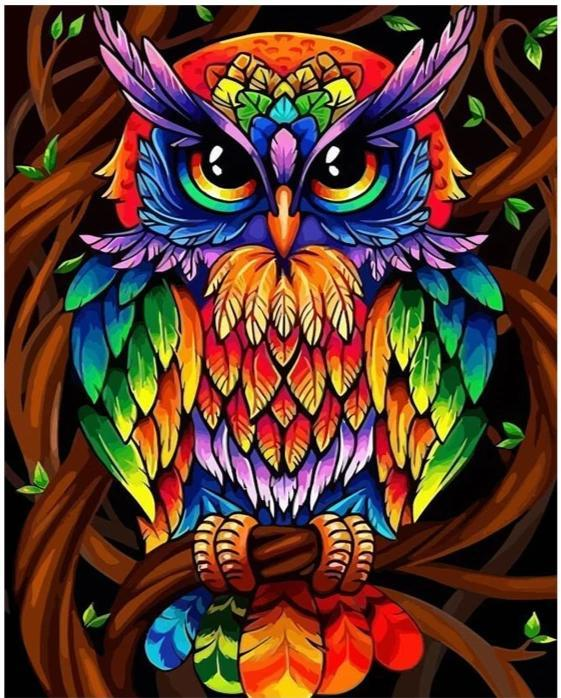 Colorful Owl - World Paint by Numbers™ Kits DIY