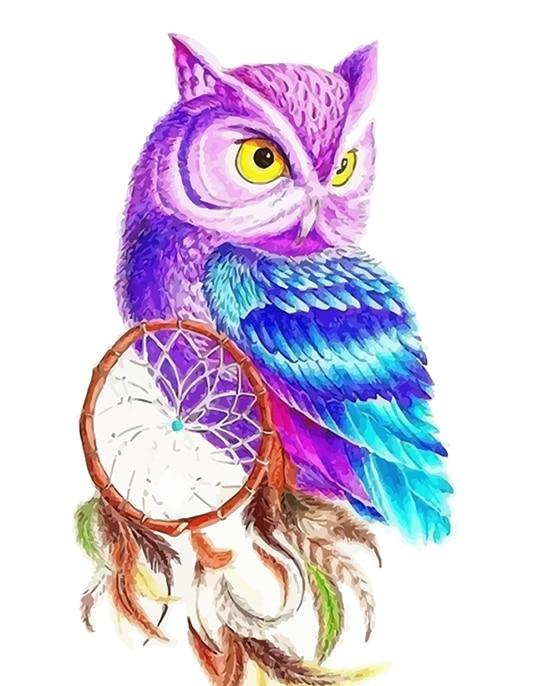 Dream Catcher Owl - World Paint by Numbers™ Kits DIY