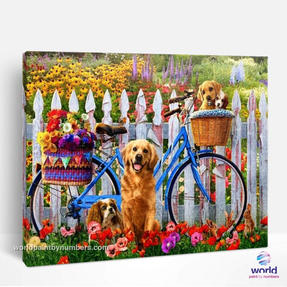 Golden Retrievers on the bike - World Paint by Numbers™ Kits DIY