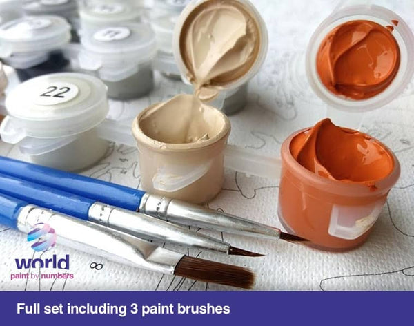 Golden Sunbath - World Paint by Numbers Kits DIY