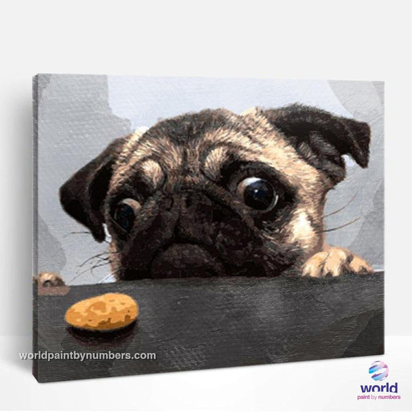 Hungry French Bulldog - World Paint by Numbers™ Kits DIY