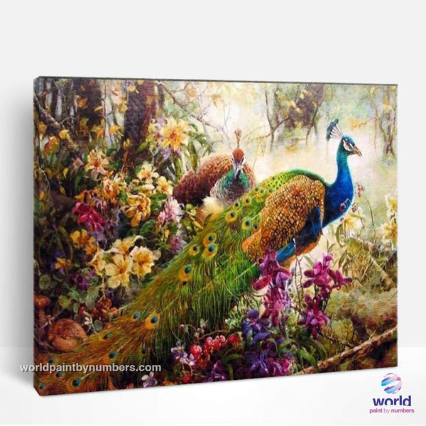 Peacock - World Paint by Numbers™ Kits DIY