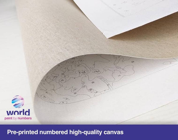 World in a Book - World Paint by Numbers™ Kits DIY
