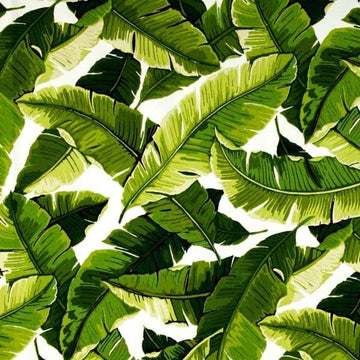 Richloom Balmoral Palm Tropical Leaf Outdoor Fabric - Fabric Headquarters