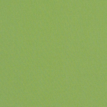 Sunbrella Elements Canvas Ginkgo Green 54011-0000 - Fabric Headquarters