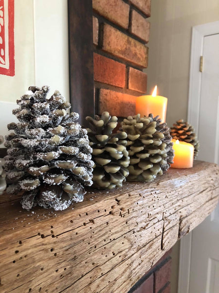 Beeswax/Pinecone Fire Starters: