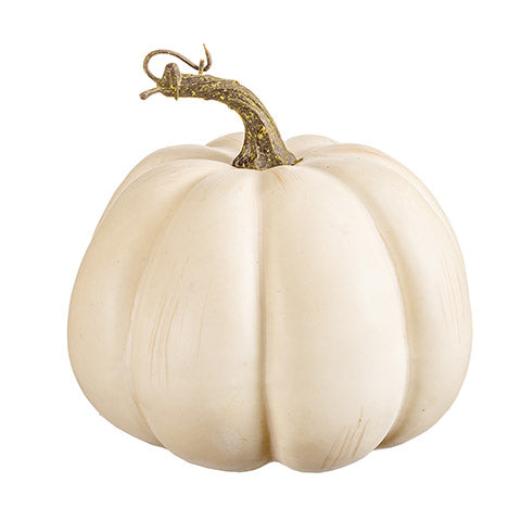 Medium Creamy White Pumpkin