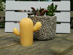 Beeswax Cactus Candle