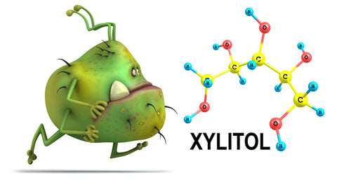 xylitol starves harmful bacteria