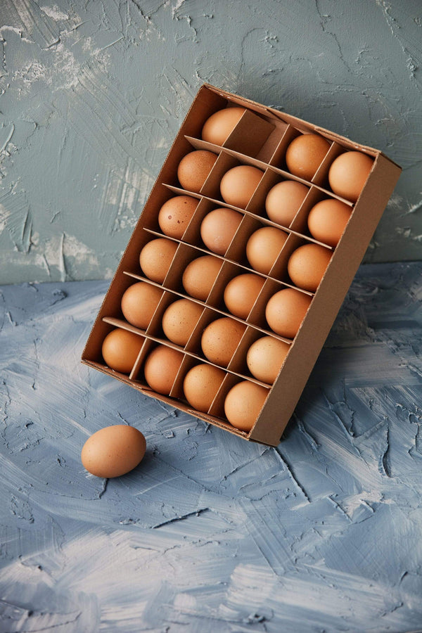 Brown Chicken Egg Boxed Set