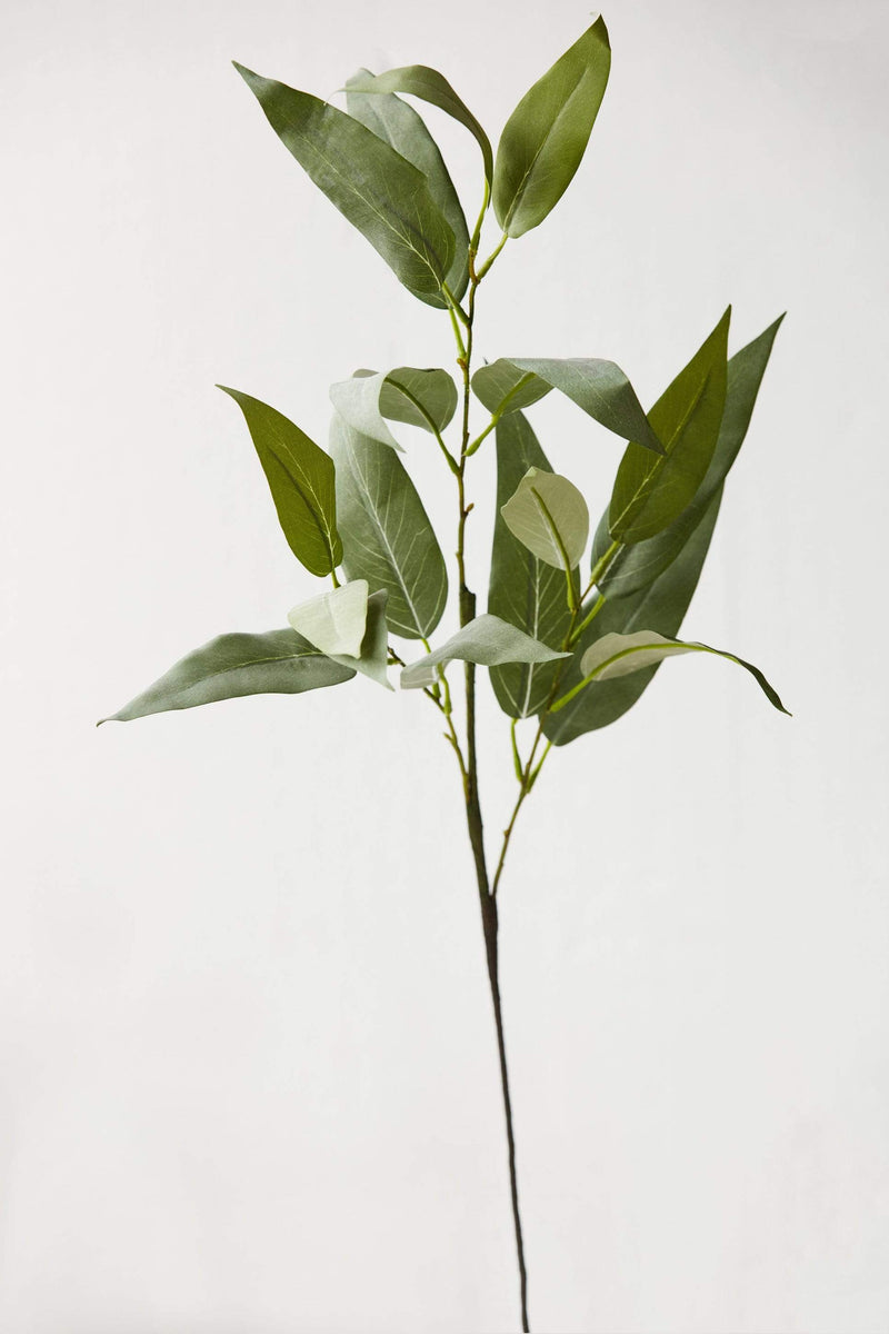 "32"" Eucalyptus Leaf Spray"