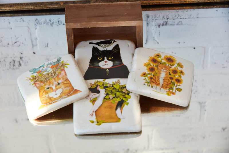 Cats and Flowers and Birds Boxed Coaster Set Vintage Look