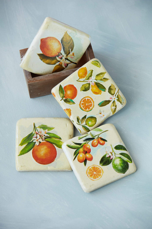 Citrus Fruit Coaster Set