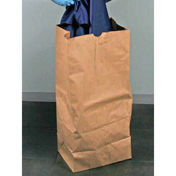 Extra-Large Paper Bags, Pack of 50