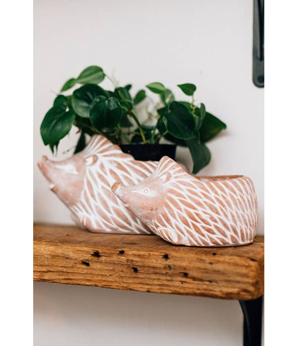Small Hedgehog Planter