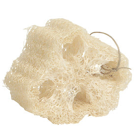 Load image into Gallery viewer, Loofa Sponge