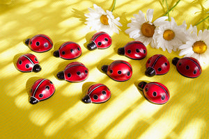 Load image into Gallery viewer, Good Luck Ladybug