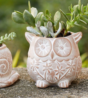 Load image into Gallery viewer, Owl Planter