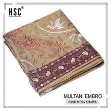 Load image into Gallery viewer, Multani Embro Pashmina Shawl For Ladies - MES7