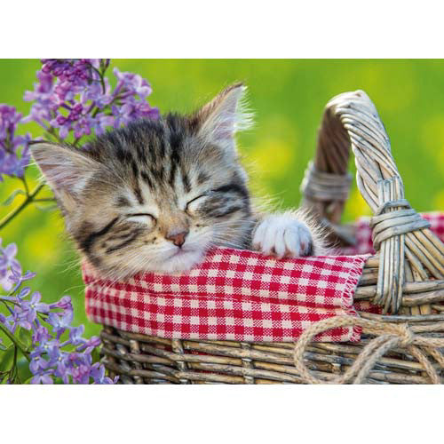 Ravensburger 100pc Sleeping Kitten